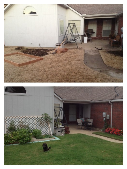 Backyard before and after - Jack and Mandy: The Blog