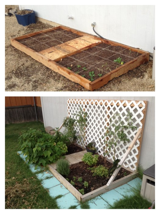 Square foot garden - Jack and Mandy: The Blog