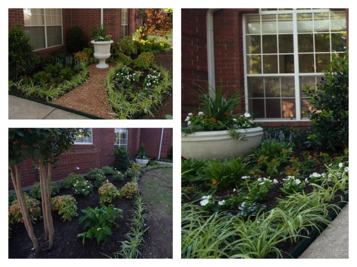 Landscaping - Jack and Mandy: The Blog